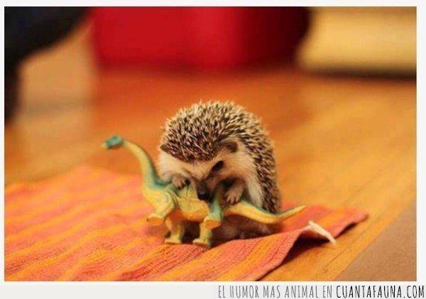 amenaza,dinosaurio,erizo,extinguir,historia,juguete,manera