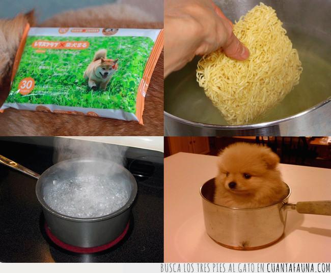 agua,cazo,cocinar,comer,comida,cuatro,fideos,hambre,hervir,instantáneo,olla,pasos,perro
