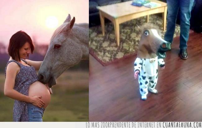 caballo,cabeza,cuerpo,disfraz,embarazo,genética,hijo,madre,misterio
