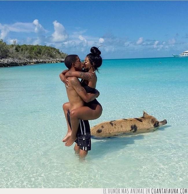 abrazo,amor,bahamas,cerdo,goals,ideal,mar,modelo,objetivos,paraíso,pareja,playa,sensual,ser