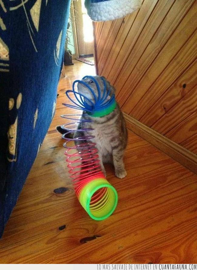 atrapar,cabeza,colores,cometer,error,espiral,juguete,meter