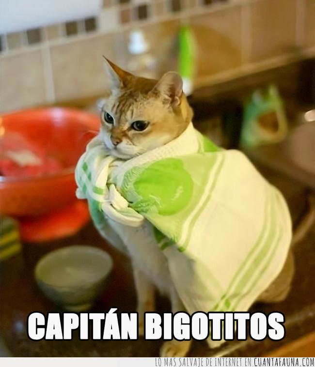 beware,bigotitos,capa,capitán,héroe,manta,pies,trapo