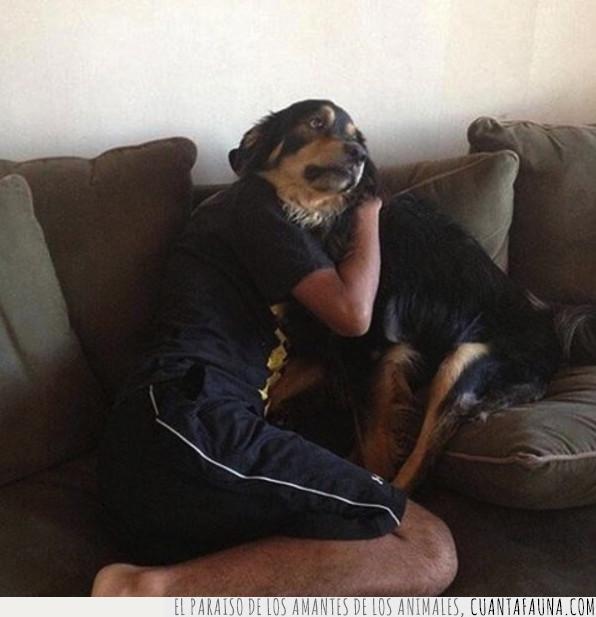 aquí,cabeza,cruzados,humano,mutante,pasar,perro,sentados,sofá