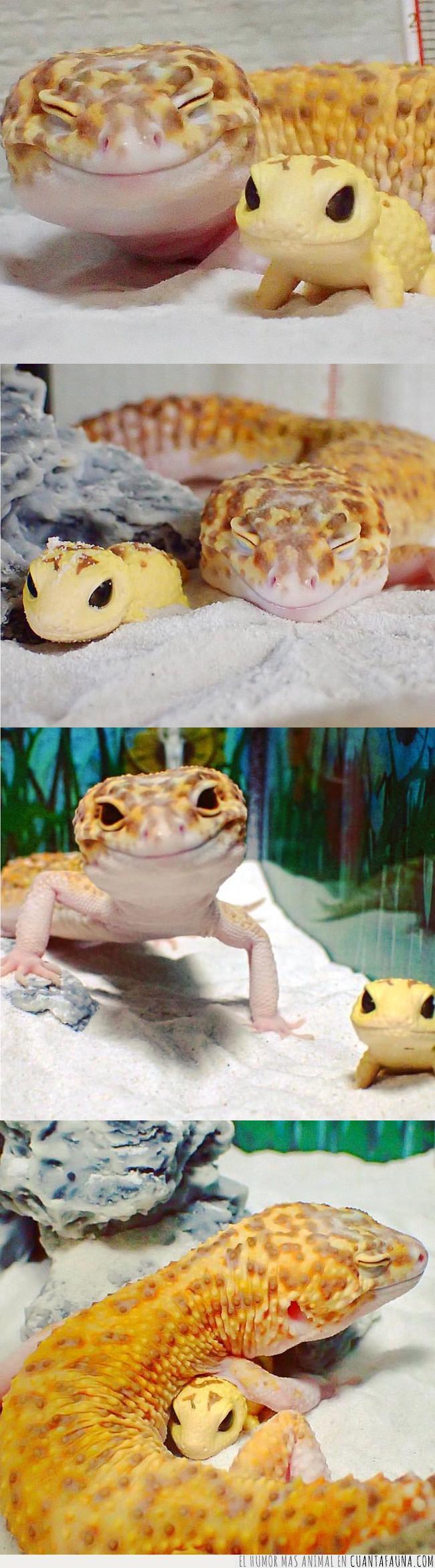famoso,feliz,fotos,gecko,imágenes,muñeco,reptil,sonriente