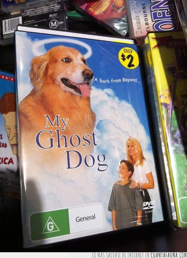 cine,cutre,dvd,peli,peliculón,perro,protagonista,tarde,ver