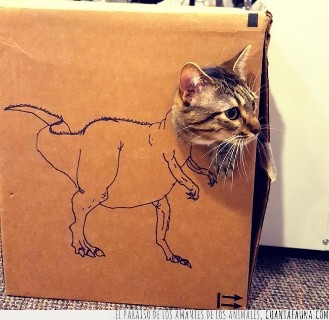 cabeza,caja,cartón,cuerpo,dentro,dibujo,dinosaurio,encajar,gato,lunes