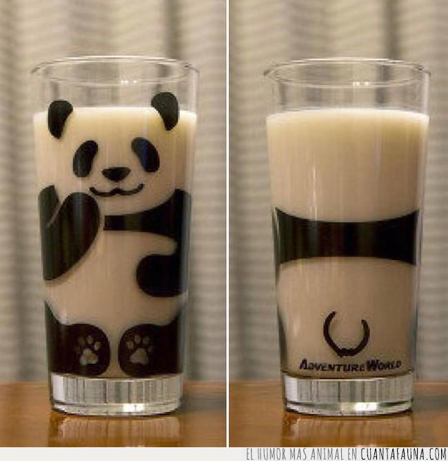 blanco,leche,merienda,negro,panda,vaso