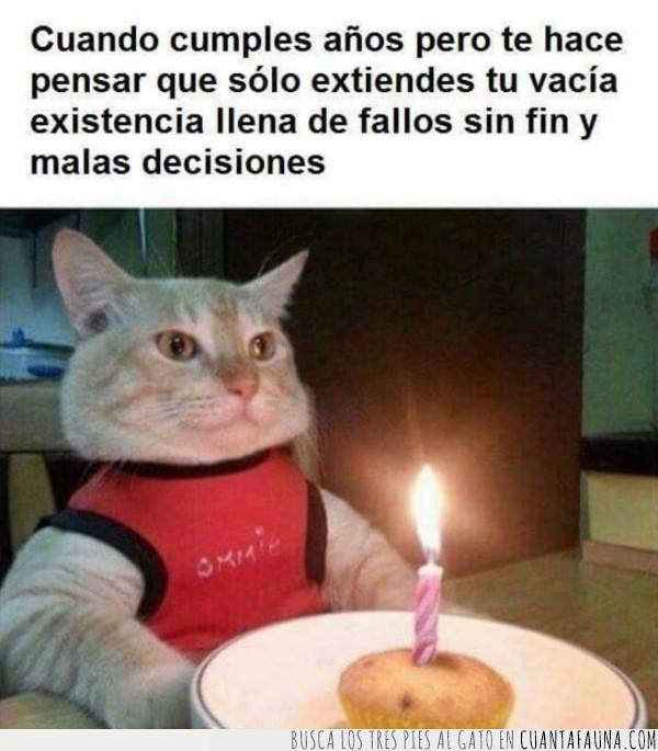 años,crecer,cumpleaños,cumplir,gato,mayor,pastel,pensar,soplar,vela,vida