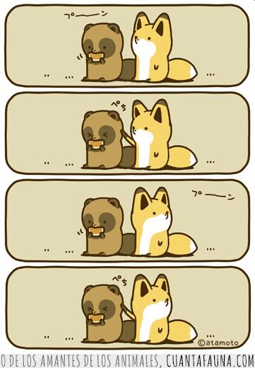 comer,cómic,mapache,molestar,panda,rojo,zorro