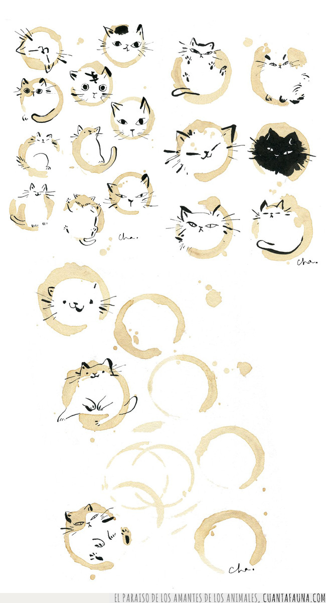 café,dibujos,gatos,ilustración,marcas,taza