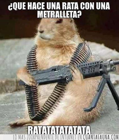 metralleta,Rata,risas.humor