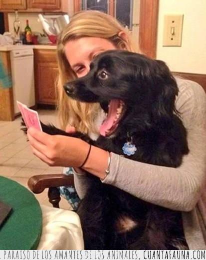 bien,cara,cartas,mal,poker,sonreír