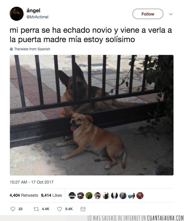 dates,first,ir,novio,perra,plantear,puerta,solo,ver