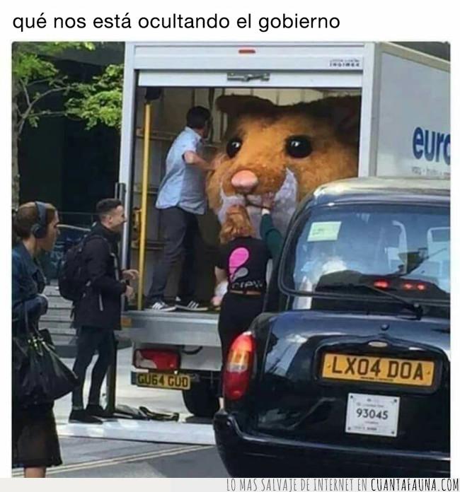 camión,conspiración,esconder,gigante,gobierno,guardar,hamster,ocultar