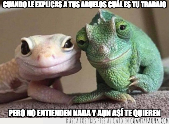 lagartos,meme,trabajo