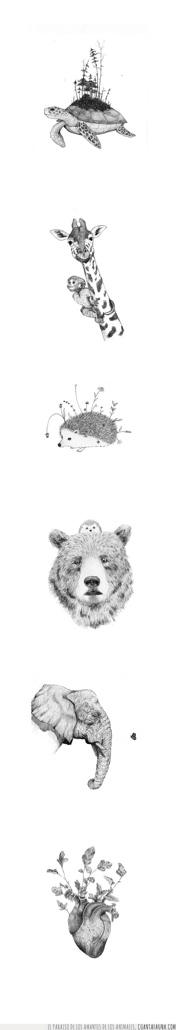 amigos,animales,arte,belleza,blancoynegro,corazón,dibujo,elefante,erizo,flores,ilustración,lápiz,mariposa,naturaleza,oso,tortuga