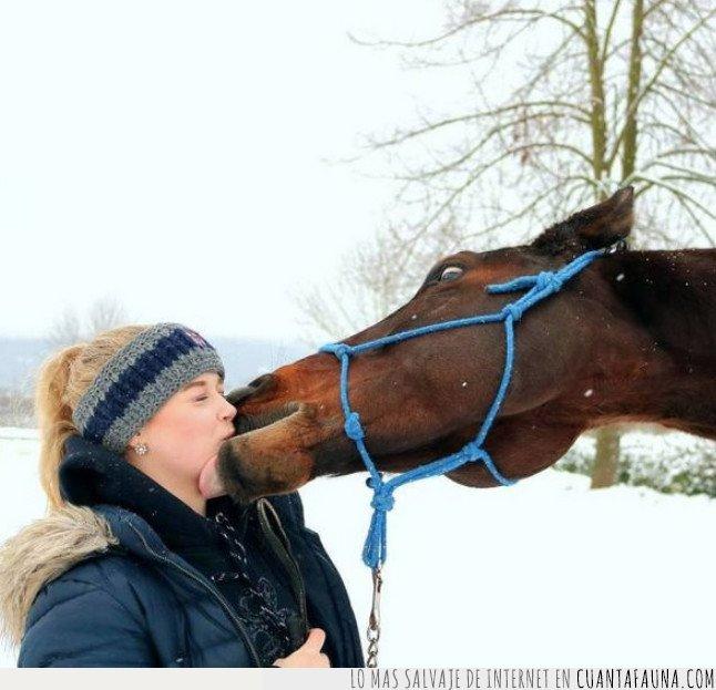 beso,caballo