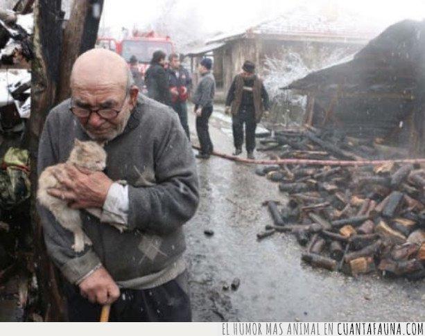 anciano,arde,gato,salvar