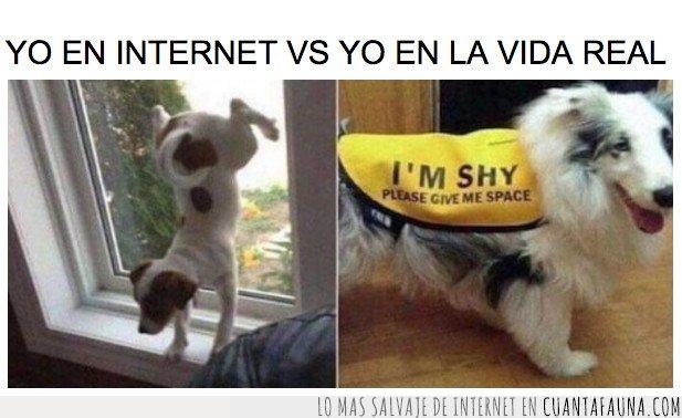yo en internet