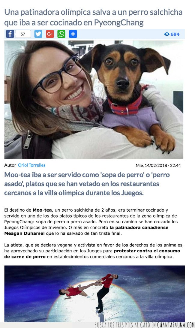 CHINA,LAMENTABLE,MALTRATO,PERRO,SALVADO