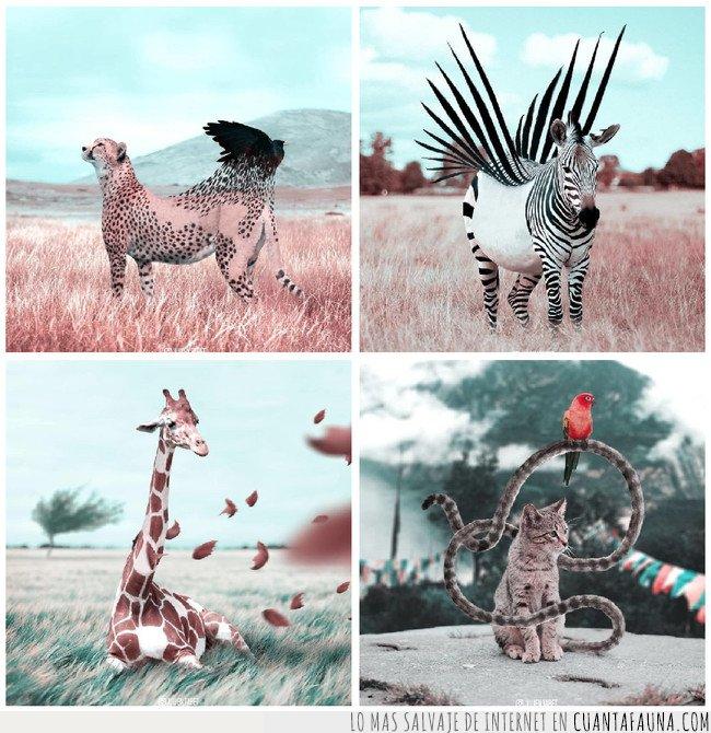 ANIMALES SALVAJES,ARTE