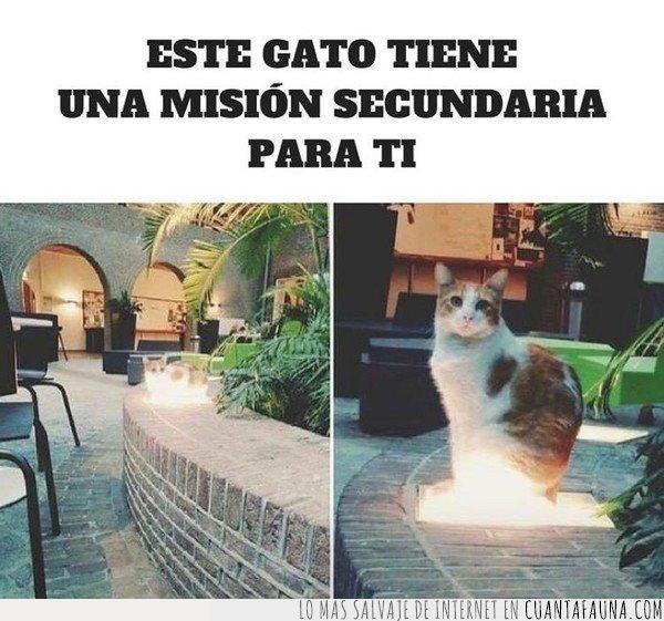 Gato,misión,videojuegos