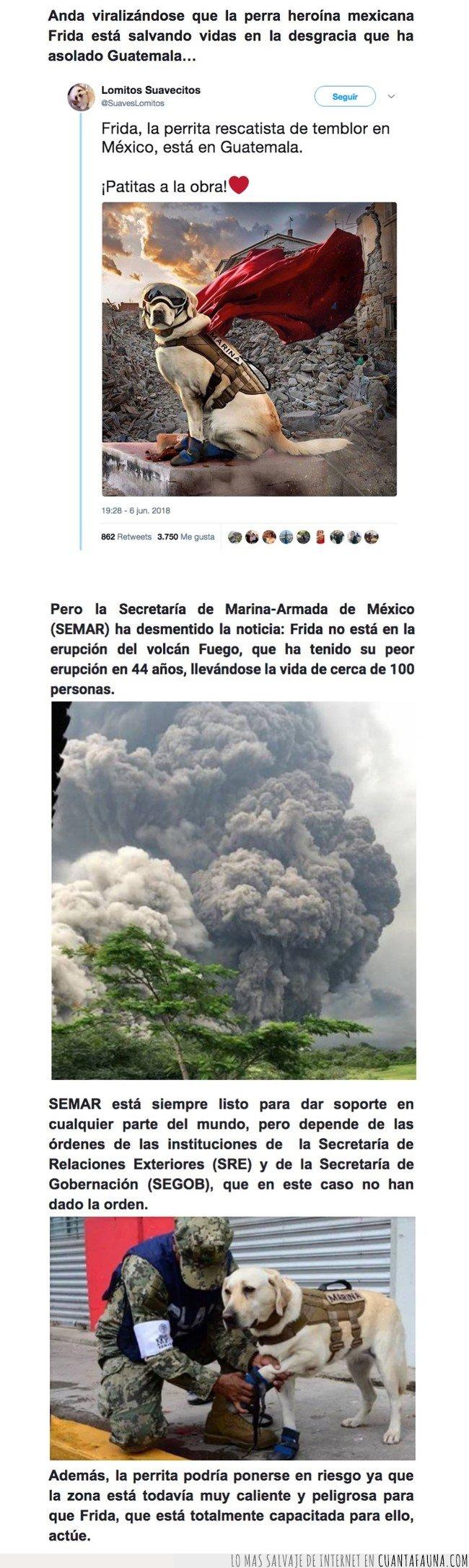 erupcion,frida,guatemala,mexico,rescate,volcan