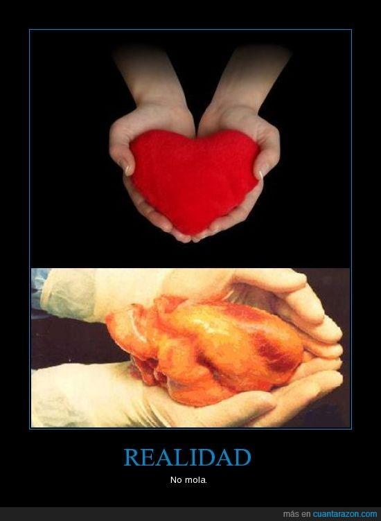 corazon,manos,mola,realidad