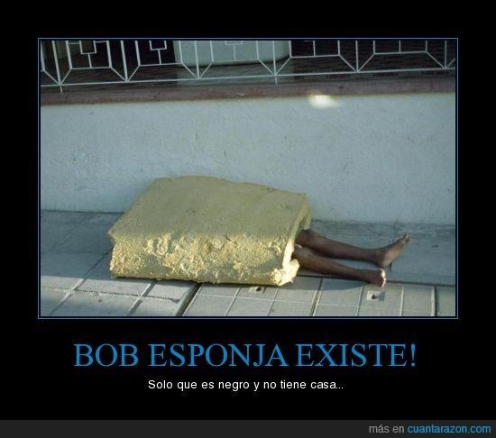 bob esponja,vagabundo