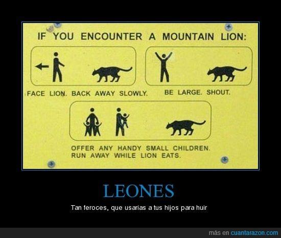 correr,leon