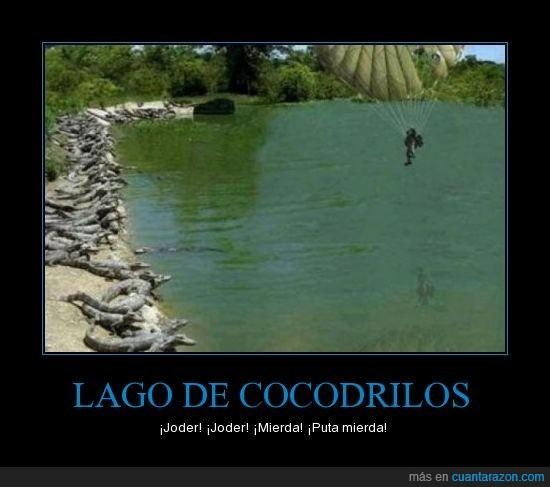 cocodrilos,lago,paracaidas