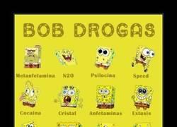 Enlace a BOB Y LAS DROGAS