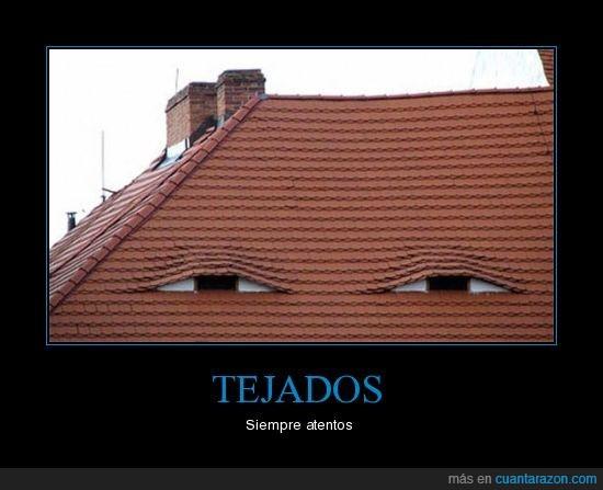 ninjas,Tejado