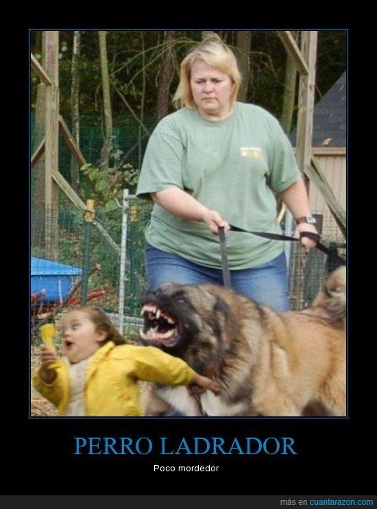 ladrar,morder,perro