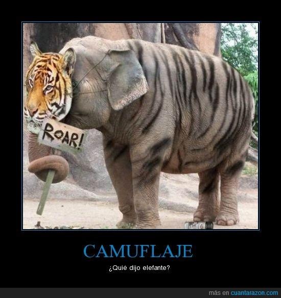 camuflaje,elefante,tigre