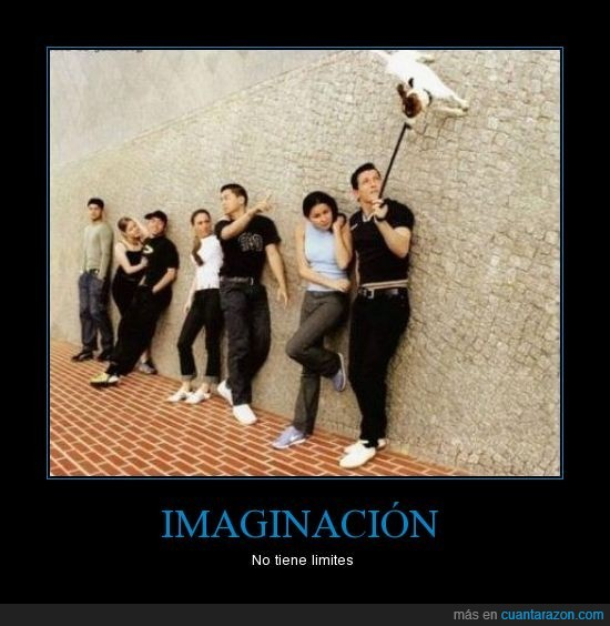 al revés,imaginación,pared,perro