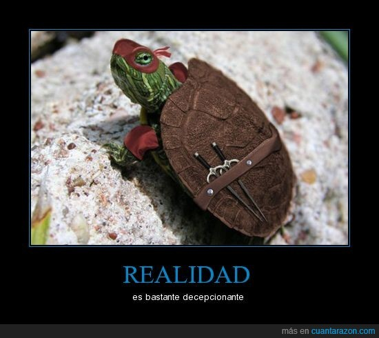 ninja,realidad,Tortugas