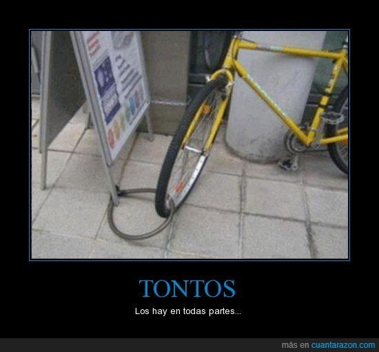 bici,cadena,correa