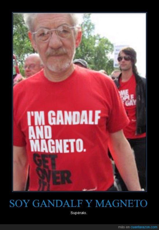 gandalf,ian mckellen,magneto