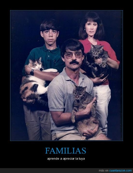 familias,gatos,raras