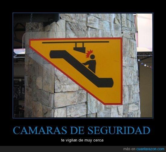 cámara seguridad,escaleras,golpe