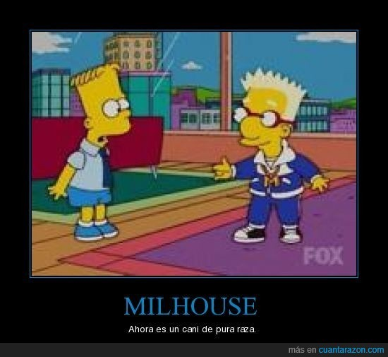 cani,Milhouse,Simpsons