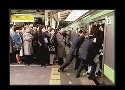 Enlace a JAPON
