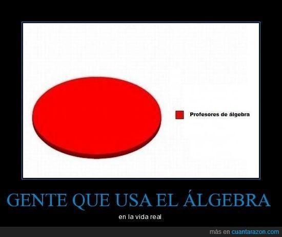 algebra,profesor