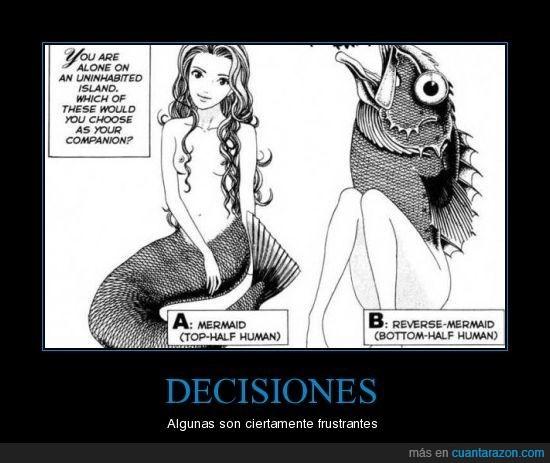 decisión,pez,sirena