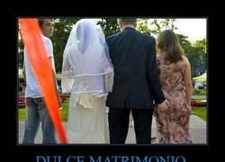 Enlace a DULCE MATRIMONIO