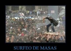 Enlace a SURFEO DE MASAS