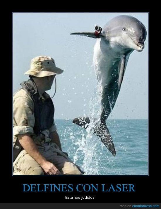 delfines,laser