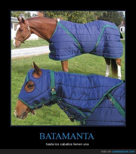 batamanta,caballo