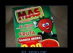 Enlace a EL HIJO DE...